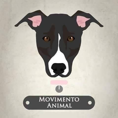 Movimento Animal -MAAE Movimento Animal Associação de Elvas