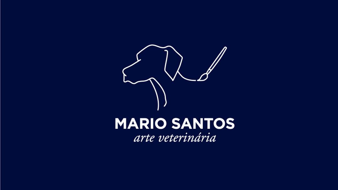 Mario Santos Arte Veterinária